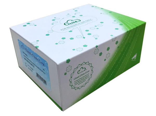 ELISA Kit for Phospholamban (PLN)